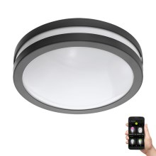 Eglo 97237 - Plafoniera LED da bagno dimmerabile LOCANA-C LED/14W/230V antracite IP44