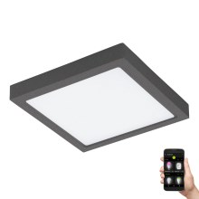 Eglo 98174 - Plafoniera LED dimmerabile da esterno ARGOLIS-C LED/22W/230V IP44