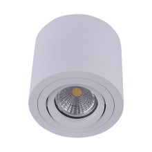 Emithor 48606 - Luce Spot da soffitto SURFACE 1xGU10/50W/230V