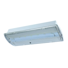 Fulgur 21179 - Luce LED di emergenza FIWA SELENA 460-3 LED/230V IP42