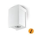 Luce Spot da soffitto LINDO 1xGU10/25W/230V