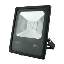 Sandria R1482 - Riflettore a LED SANDY LED/30W/230V IP65
